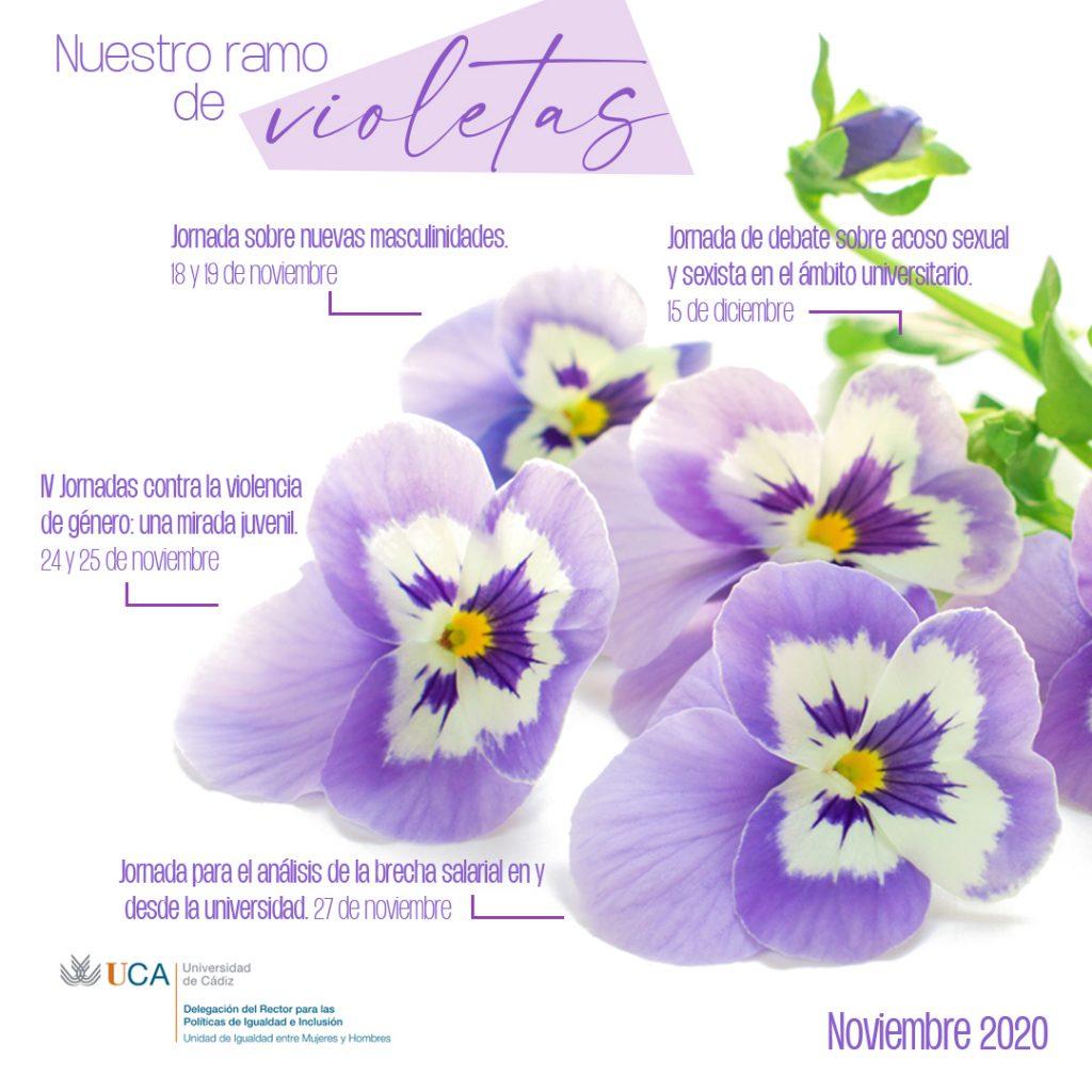 Nuestro ramo de violetas. Noviembre 2020.